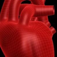Cholesterol – Friend or Foe?